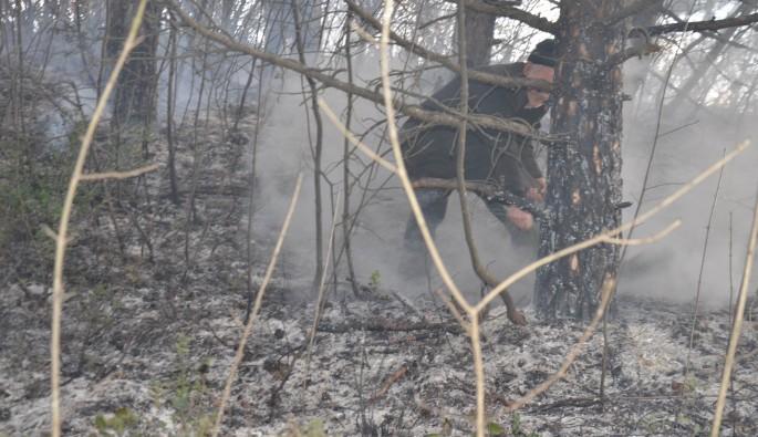 Bursa'da orman yangını panik yarattı
