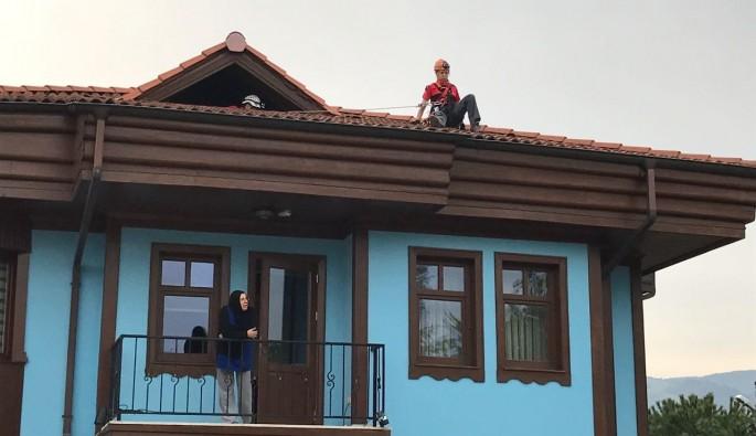Bursa'da çatıda mahsur kalan kırlangıç için operasyon