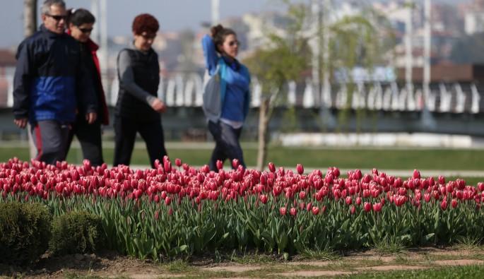 Bursa'da parklar çiçek açtı