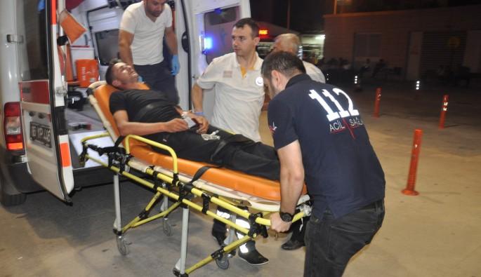 Bursa'da arılar hastanelik etti