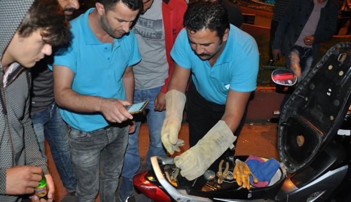 Bursa'da motosiklette yılan operasyonu