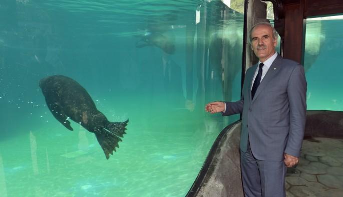 Bursa Zoo'nun yeni misafirleri geldi