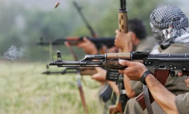 Pervari'de bir grup terörist tespit edildi