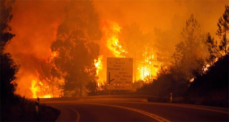 Portekiz'deki yangında ölü sayısı 62'ye yükseldi