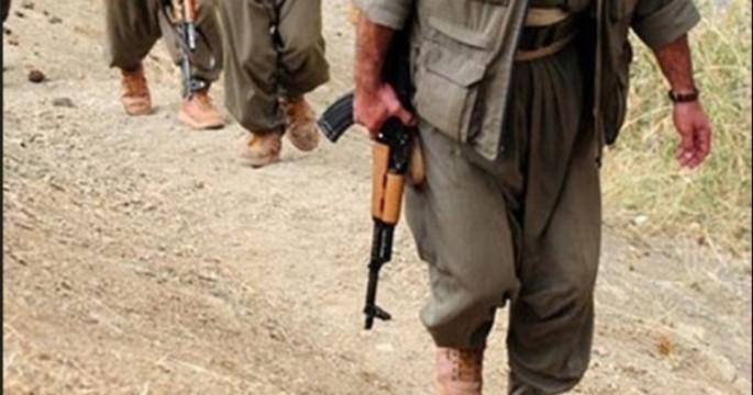 Siirt'te teröristler güvenlik güçlerine teslim oldu