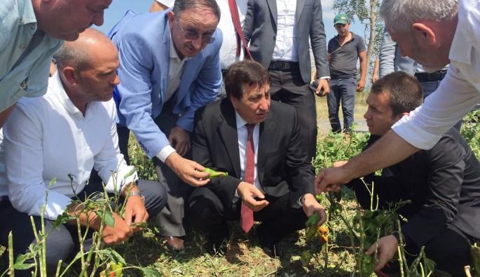 Bursa Valisi İzzettin Küçük'ten çiftçiye ziyaret