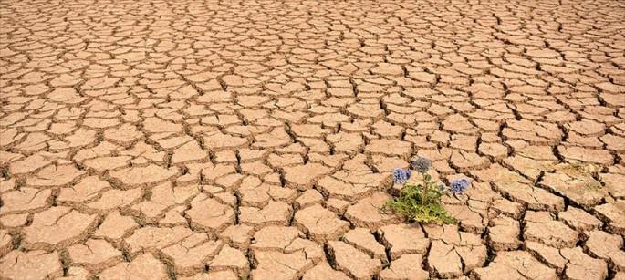 Küresel sıcaklık 2 dereceden daha fazla artacak