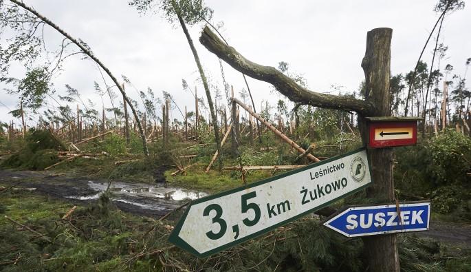 Polonya'da fırtına: 4 ölü, 28 yaralı