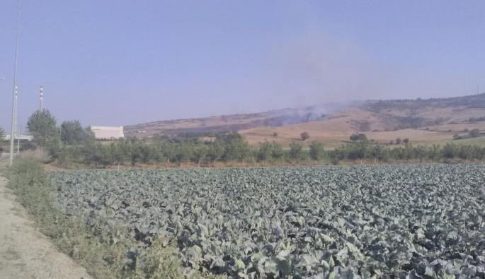 Bura'da 50 dönüm orman yandı, cam devi fabrika büyük tehlike atlattı