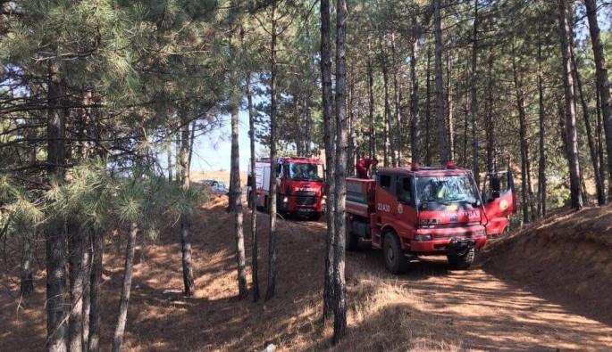 Bingöl'de çamlık yangını
