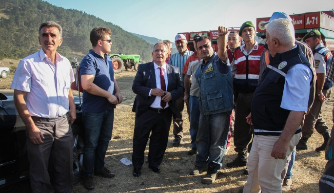 Kütahya'da 600 hektarlık ormanlık alan yandı