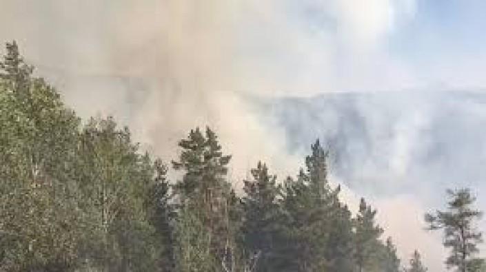 Sarıkamış'taki orman yangını 7 gün sonra söndürüldü