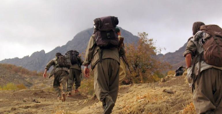 Siirt ve Hakkari'de PKK'ya ağır darbe