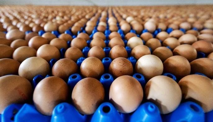 TESK'ten zehirli yumurta açıklaması