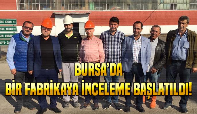 Bursa'daki balık ölümlerine inceleme
