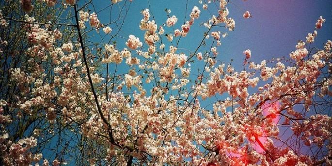 İlkbahar ve sonbahar mevsimi kalkıyor