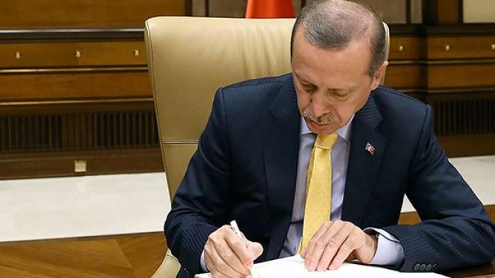 Erdoğan'dan daha yeşil bir Türkiye için 23 milyon eve mektup