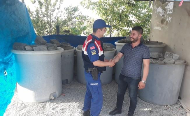 Akhisar'da zeytin hırsızlığı