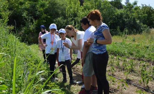 Aydınlı çocuklar tarımla tanıştı