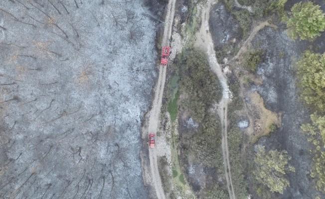 İzmir'deki yangın havadan görüntülendi