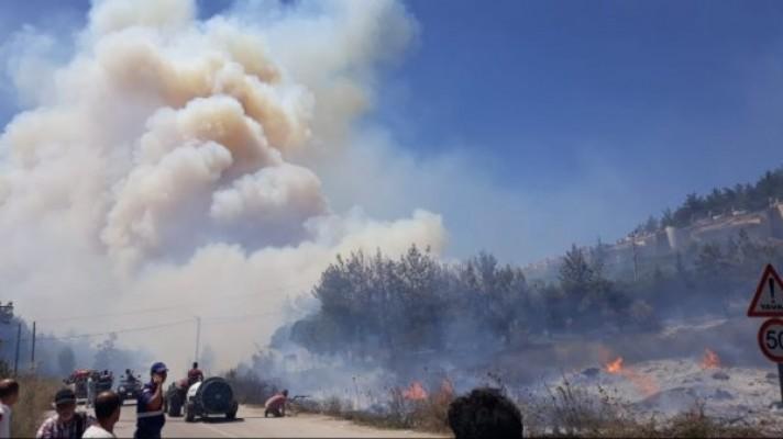 Bursa'da orman yangını devam ediyor...