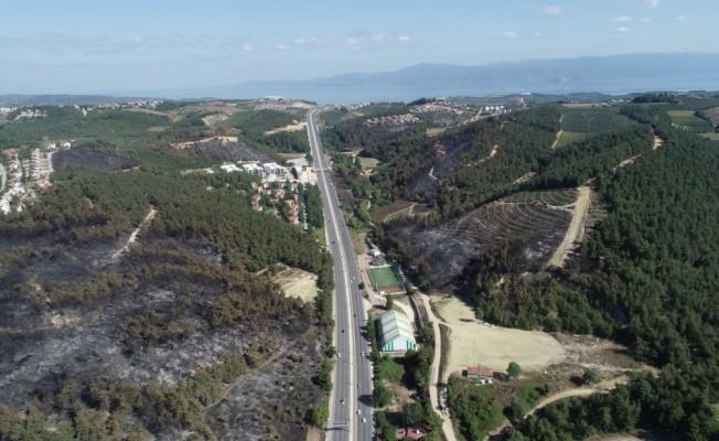 Bursa'daki orman yangını