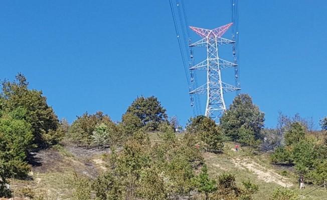 Ormanlık alanda çıkan yangında iki dönüm mera alanı yandı