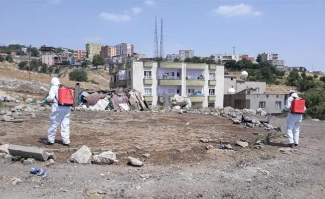 Şırnak şehir merkezinde ilaçlama çalışmaları devam ediyor