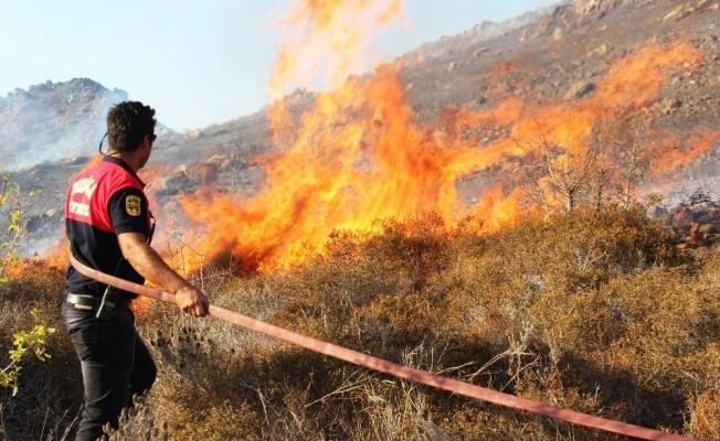2 uçak, 1 helikopter Bodrum'daki yangını güçlükle söndürdü