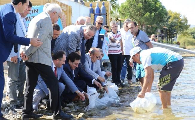 500 bin balık İznik Gölü ile buluştu