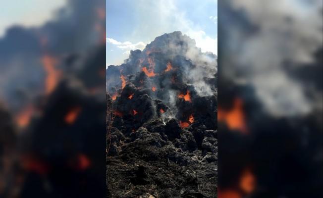Bingöl'de tonlarca yonca yandı