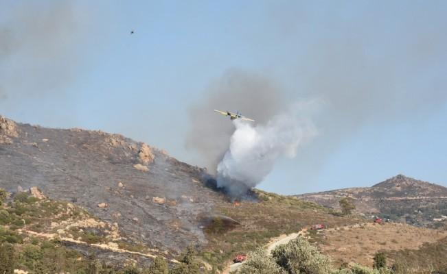 Muğla'da makilik yangını
