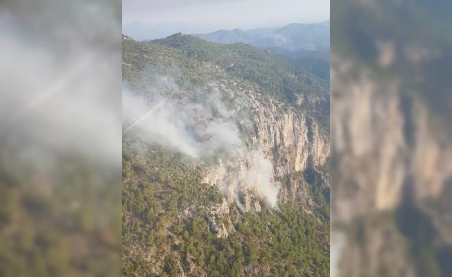 Yıldırım 2 hektar ormanlık alana zarar verdi
