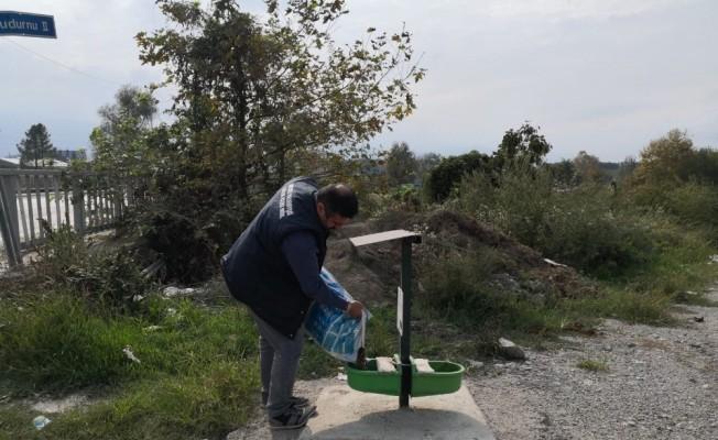Akyazı Belediyesi sokak hayvanlarının yanında