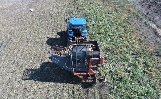 Elazığ'ın bu yıl yeterli yağış almaması pancarda üretimi azalttı