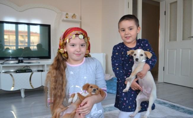 Ölüme terk edilen yavru köpeklere çocuklar sahip çıktı