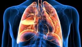 Akciğer kanseri dünyada en sık görülen kanser türlerinden