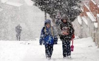 Yarın o ilde kar tatili ilan edildi