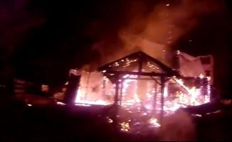 Bursa'da balık tesisi alev alev yandı