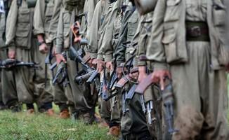 Hakkari'de 15 terörist öldürüldü
