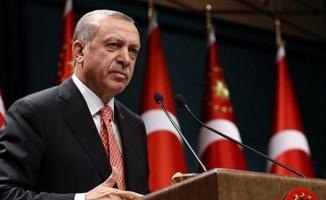 Cumhurbaşkanı Erdoğan'dan Zeytin Dalı açıklaması