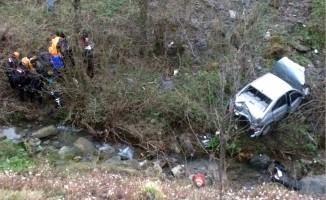 Otomobil şarampole uçtu! 1 yaralı