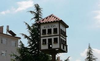 Safranbolu evi tarzında kuş yuvası