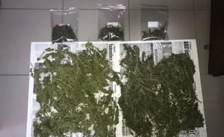 Bafra'da 1 kilo 100 gram kubar esrar ele geçirildi