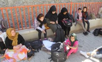 Başkale'de 43 yabancı uyruklu kaçak yakalandı