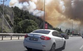 Bursa'daki orman yangını ile ilgili Alinur Aktaş'tan flaş açıklama