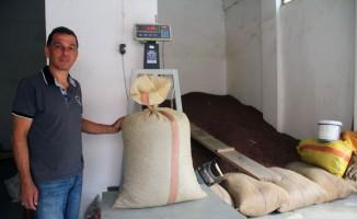 Giresun'da serbest piyasada fındık fiyatı 14 liraya dayandı