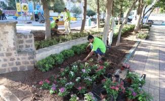 Haliliye'deki parklarda peyzaj çalışmaları