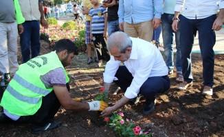 Halilye'de parklar çiçeklerle donatılıyor