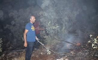 Midyat'ta korkutan orman yangını